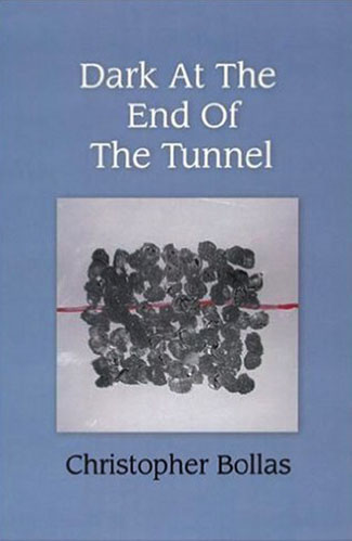Dark at the End of the Tunnel by Christopher Bollas